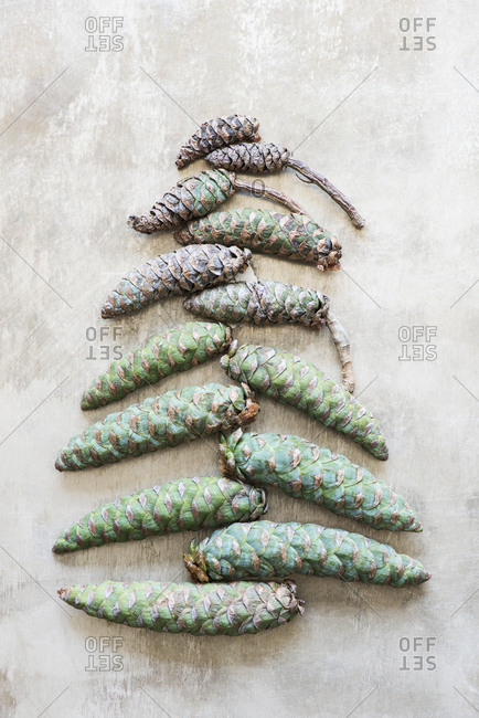 Cones arranged in a Christmas tree shape