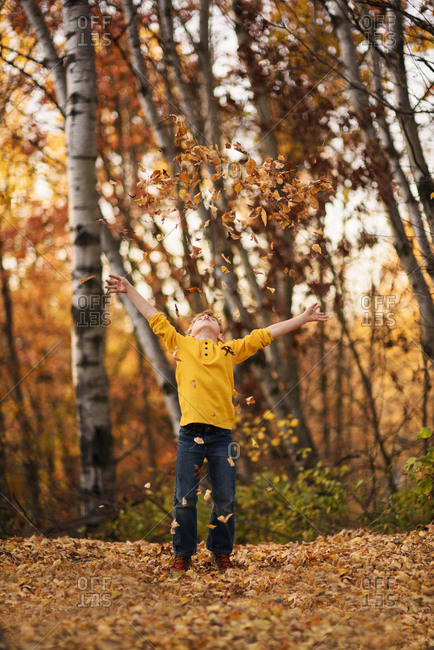 Young boy backlit and throwing leaves into the air