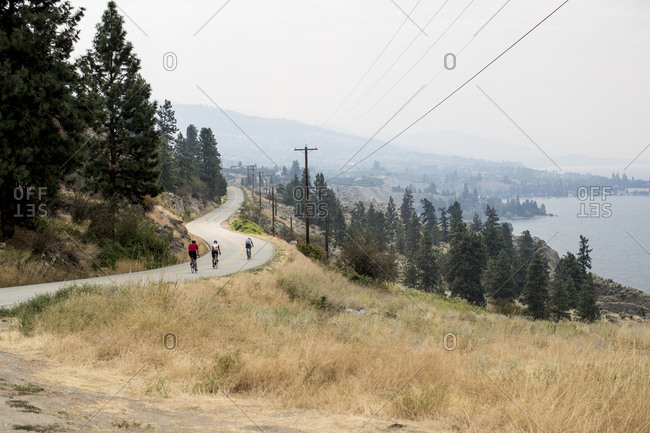Bicyclists riding on road through coastal forest