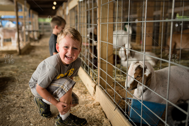 Boy laughing next to goat pen