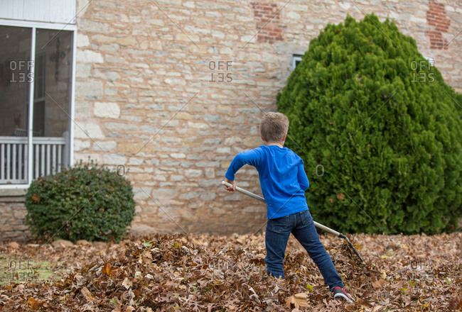 Rear view of a boy raking leaves