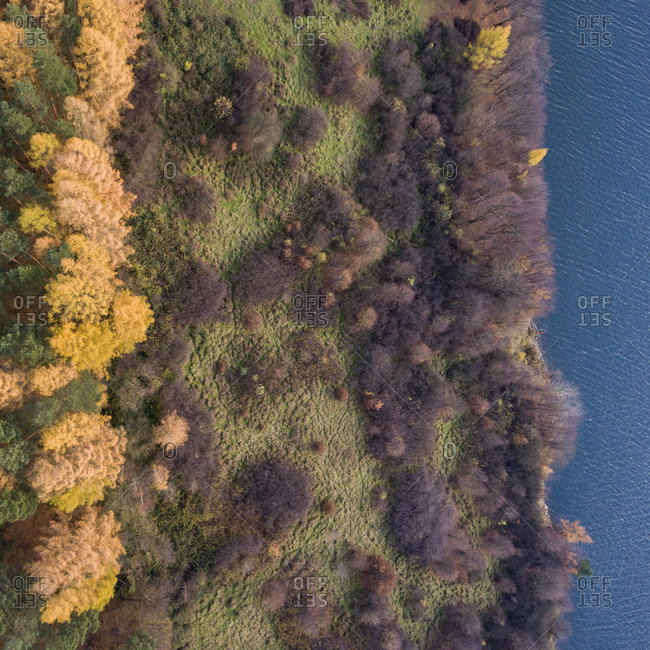 Autumn landscape with water from above