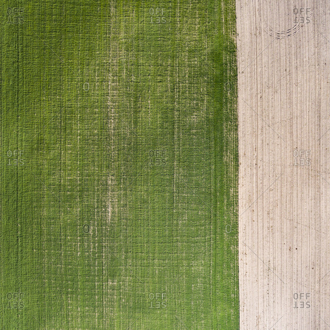 Aerial view of green and mowed farm fields