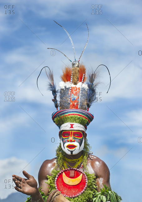 Western Highlands, Papua New Guinea - August 14, 2011: Tribal performer wearing bird of paradise plumes from the Anglimp District in Waghi Province Western Highlands Papua New Guinea performing at a Sing-sing - Hagen Show