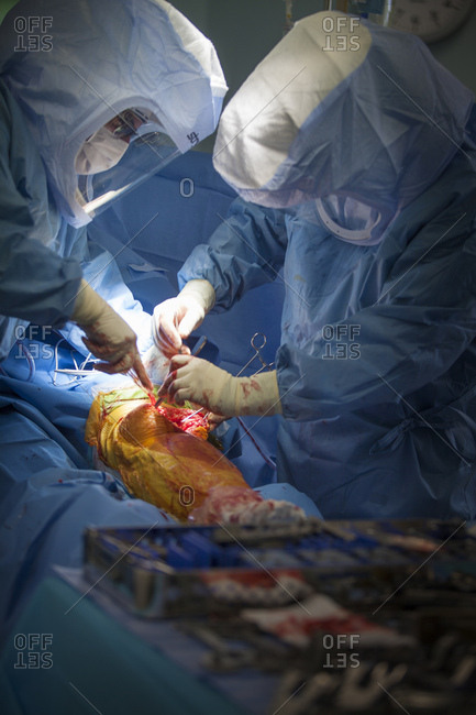 May 7, 2014: Reportage in the operating theatre with the orthopedic surgery teams of Leman hospitals in Thonon, France. Fitting a knee prosthesis.