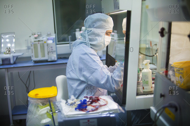 November 18, 2014: Reportage in a Swiss biobank which specializes in storing stem cells from blood in the umbilical cord (hematopoietic stem cells) and stem cells from tissue from the umbilical cord (mesenchymal stem cells). Adding cryoprotectant to the cryogenic bag containing the isolated stem cells.