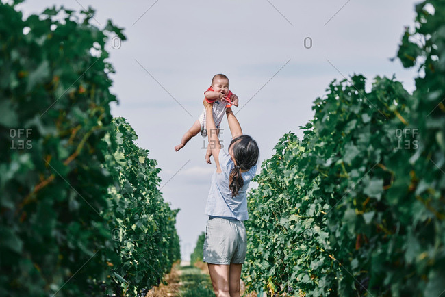 Woman holding up baby daughter in vineyard, Bergerac, Aquitaine, France