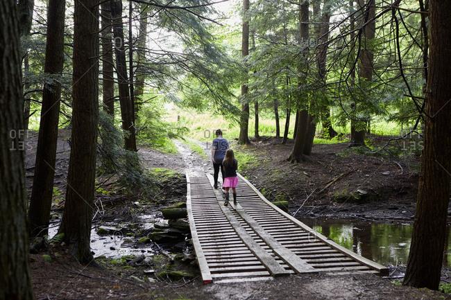 Two girls walking across wooden footbridge in forest, rear view