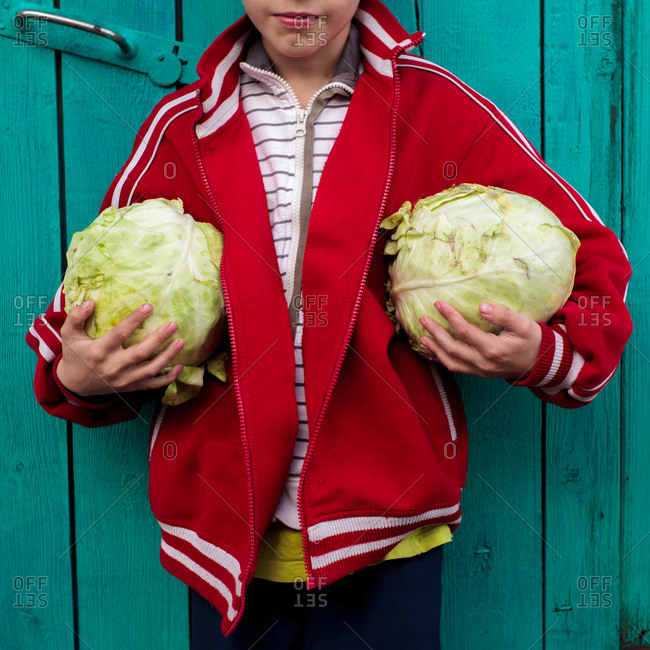 Boy carrying large cabbages