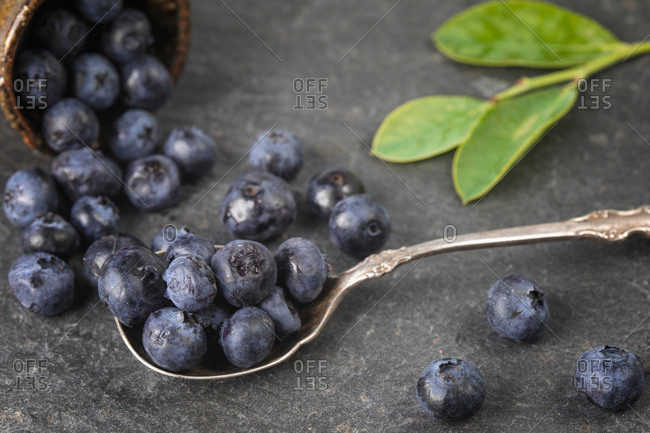 Blueberries spilling from bowl and on spoon