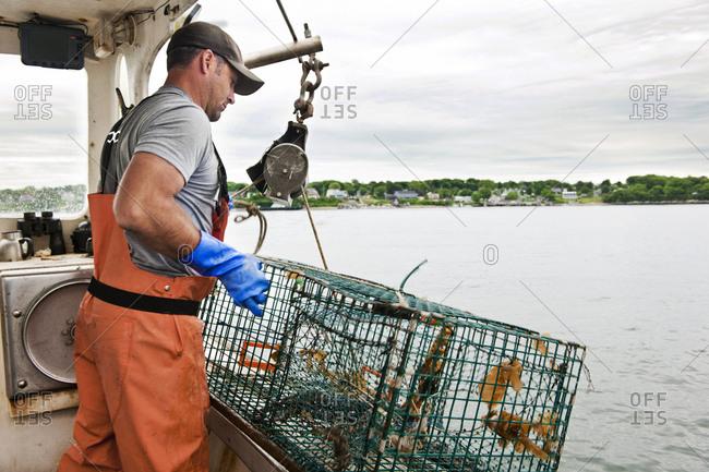 Lobsterman hauls traps on boat in Casco Bay