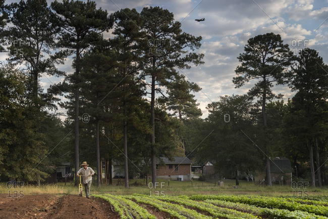 Hungry Heart Farm, Conley, Georgia. Owner Matthew Bagshaw planting carrots. This is the first year he has had his own farm.