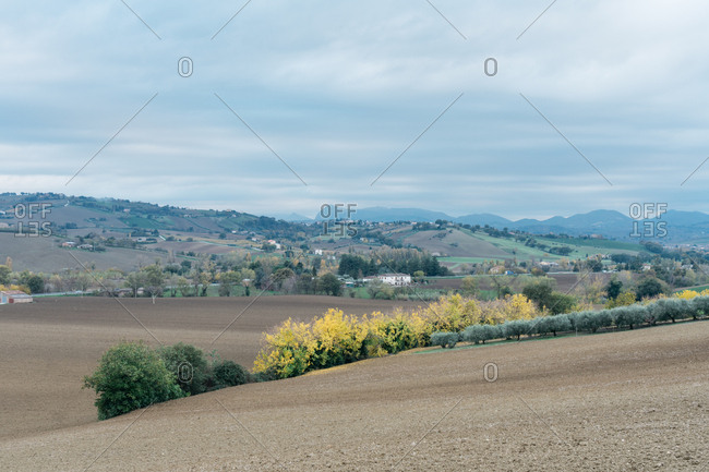 Rural hills in Senigallia, Marche, Italy