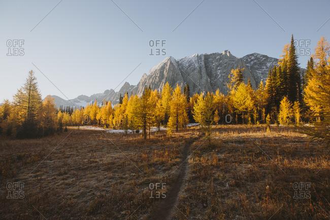 Fall mountain landscape in British Columbia, Canada