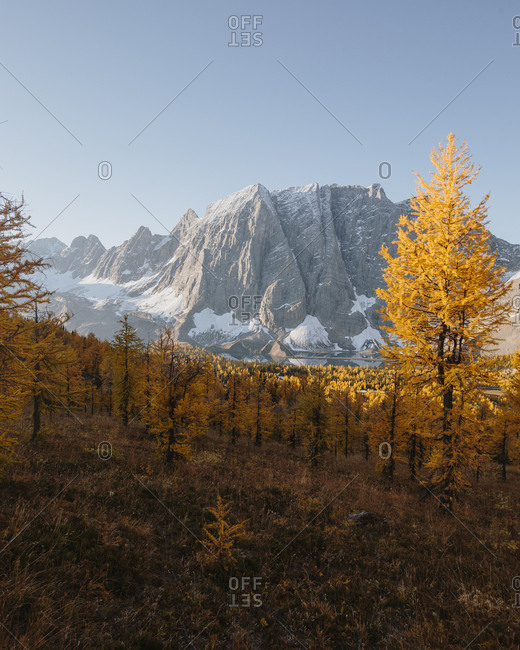 Floe Lake surrounded by yellow trees in British Columbia, Canada