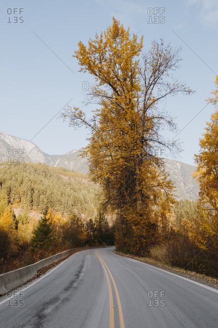Winding road through autumn landscape in Montana