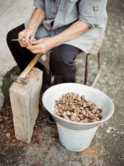 Person cracking open walnut shells