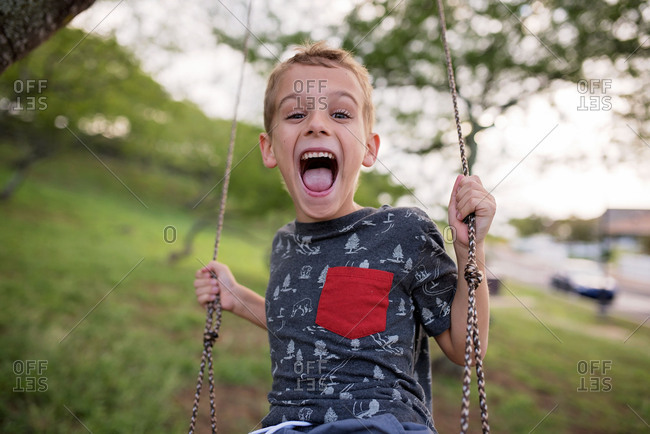 Smiling boy swinging on a tree swing