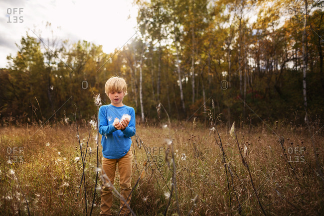 Young boy playing with weeds in a field