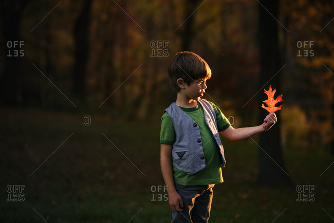Young boy playing with autumn leaf