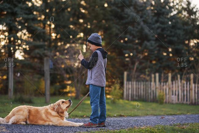 Young boy teaching his golden retriever