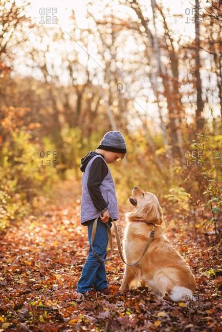 Young boy out on a walk with a golden retriever dog