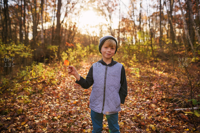 Young boy in the woods holding a colorful autumn leaf