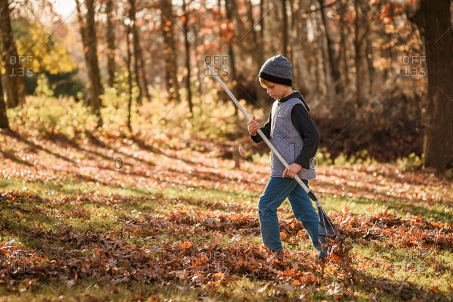 A  young boy raking leaves
