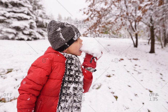 Young boy eating fresh snow