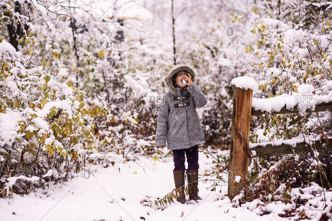 Young girl eating snow on winter trail