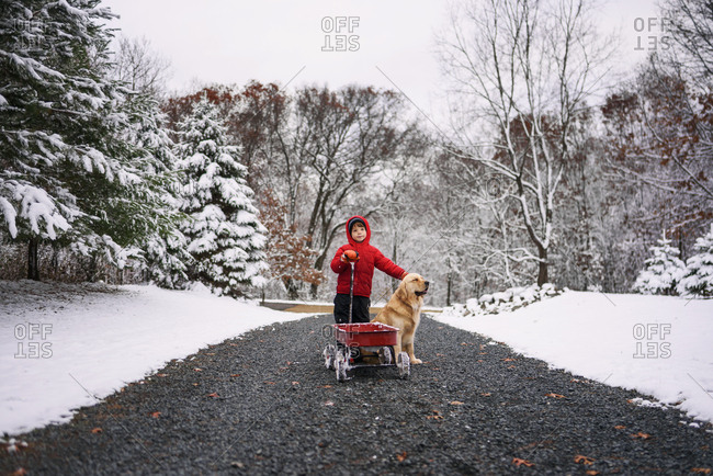 Young boy playing in the snow with a dog and little red wagon