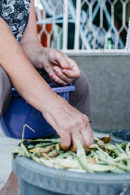 Senior woman sorting green beans