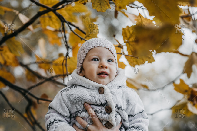 Curious little girl among autumn leaves
