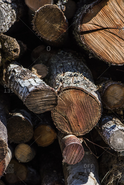 Wood from forestry work in Italy