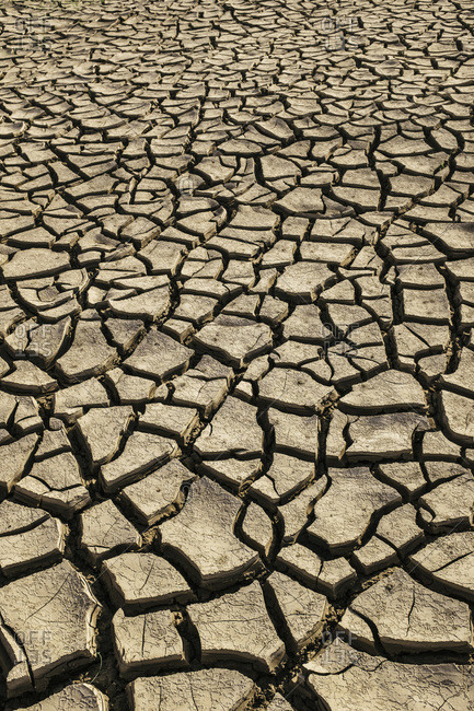Dried and Cracked Earth, Dabhoi, Gujarat, India