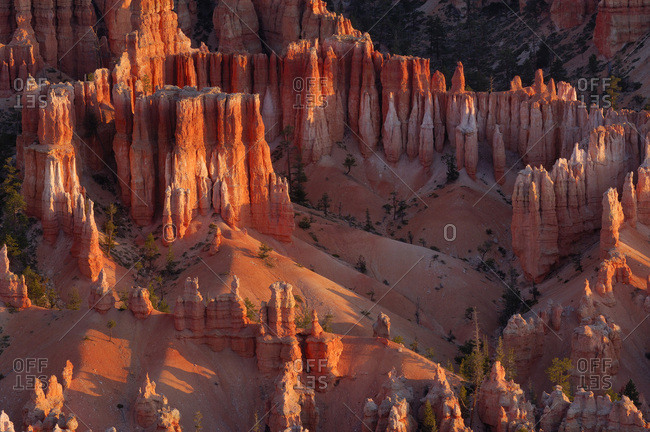 Overview of the Hoodoos of the Claron Formation at sunrise in Bryce Canyon National Park, Utah, USA
