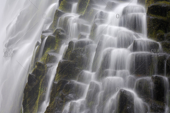 Close-up of the Proxy Falls cascading over basalt columns at Three Sisters Wilderness in Oregon, USA