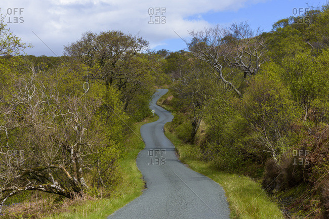Winding single track road through the countryside in spring on the Isle of Skye in Scotland, United Kingdom