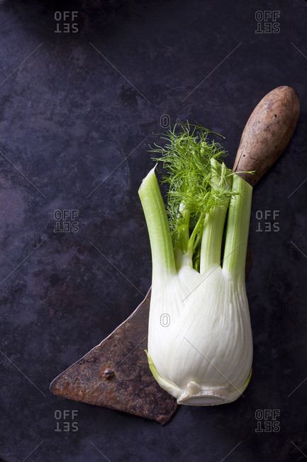 Fennel corm and an old cleaver