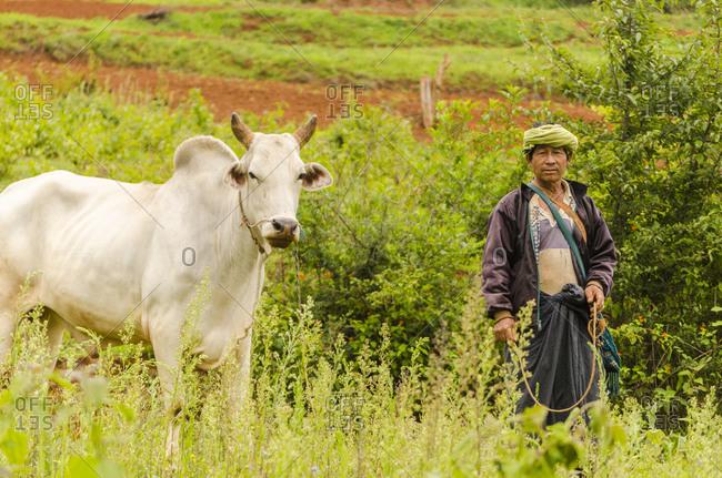 Kalaw, Myanmar - June 30, 2015: Farm worker in Kalaw