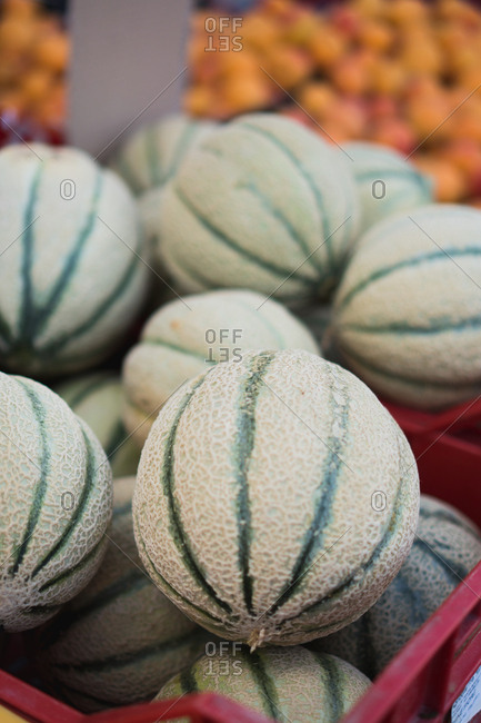 Melons market in Orbetello, Italy
