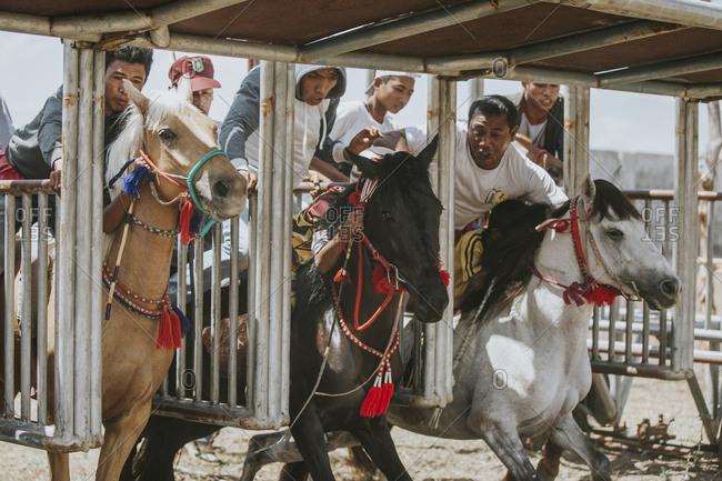 Indonesia, Sumbawa Besar - September 16, 2017: People motivating jockeys at starting gate during horse racing