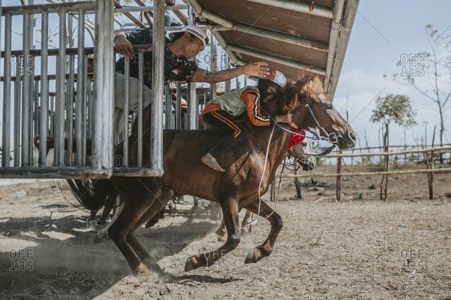 Indonesia, Sumbawa Besar - September 21, 2017: Man guiding child jockey on racehorse at starting gate during horse racing