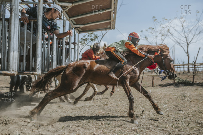 Indonesia, Sumbawa Besar - September 21, 2017: Child jockeys on racehorses at starting gate during horse racing