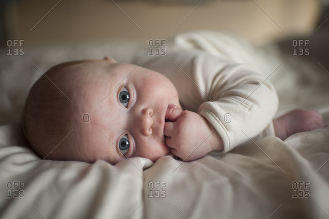 Portrait of cute baby boy with finger in mouth lying on bed