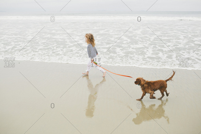 High angle view of girl holding pet leash while walking with dog on shore at beach