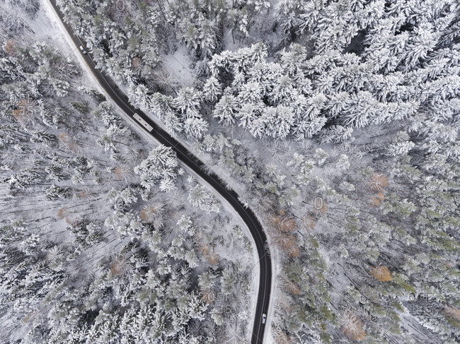 Fresh snowfall over woods and winding road in Poland