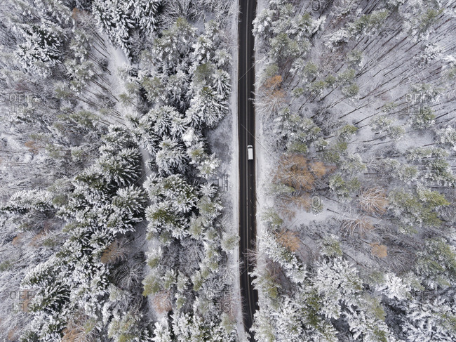 Fresh snowfall over woods and road in Poland