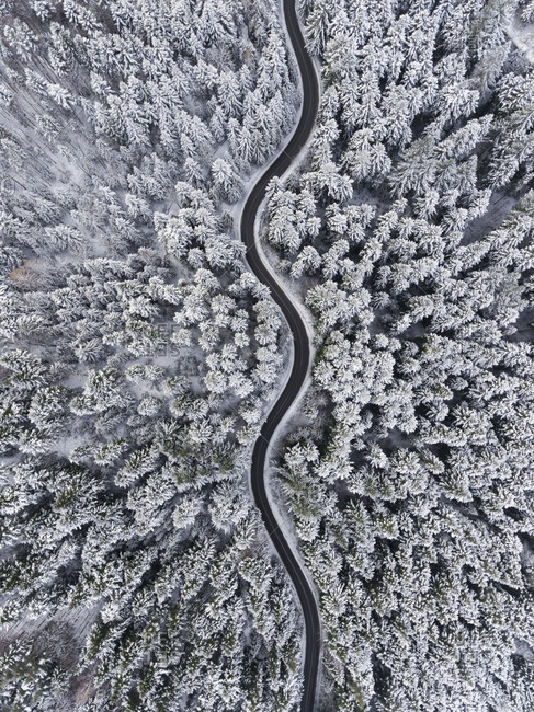 Fresh snowfall over woods and curving road in Poland