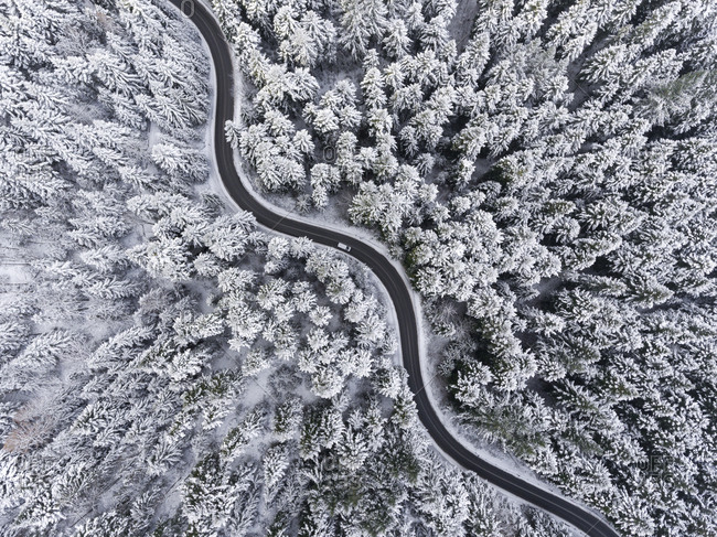 Aerial view of winding road and forest covered in fresh snow